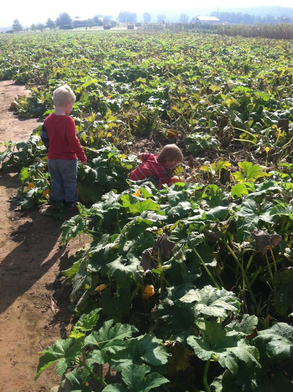 Pumpkin-Patch-Fun-04