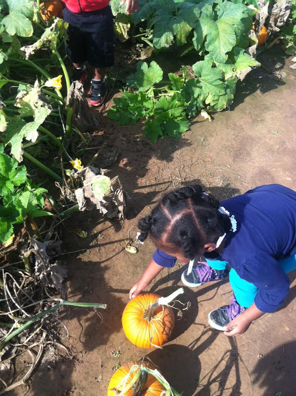 Pumpkin-Patch-Fun-11